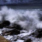Splash by Rodney Trenchard