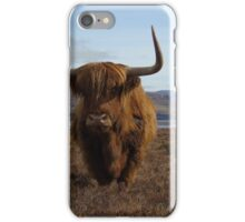 Highland Coo iPhone Case/Skin