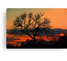 A Typical African Sunset! Canvas Print
