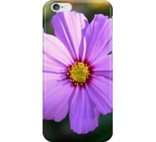 Roadside Wildflower iPhone Case/Skin