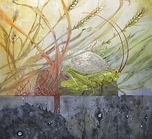 Grasshopper by Stephanie Law