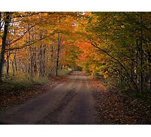 Cascade Road Photographic Print