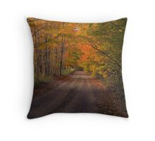 Cascade Road Throw Pillow