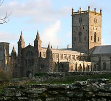 St David's Cathedral by NuevoVision