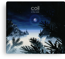 Coil - Musick To Play In The Dark Canvas Print