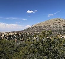 Chiricahua National Monument Panorama by marybedy