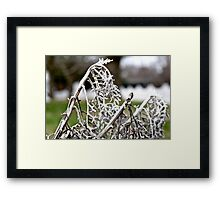 White Branch Framed Print