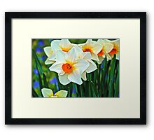 Orange or White Framed Print