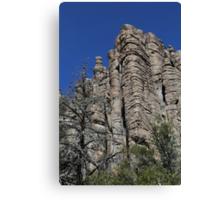 Chiricahua National Monument Tuft 3 Canvas Print