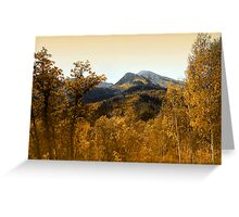 Silver and Gold, Wasatch Mountains Greeting Card