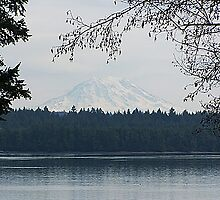 Mt. Rainier (Arcadia Point View) by Jonice