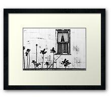 Old Window Tombstone Arizona BW Framed Print