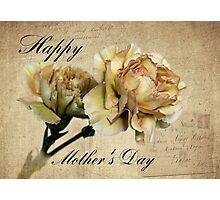 Mother's Day Carnations Photographic Print