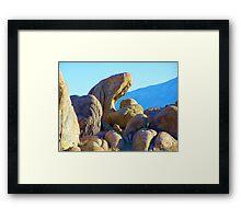Rock eater Framed Print