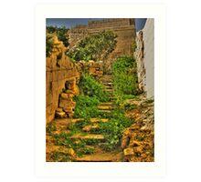 Mdina Garden Steps Art Print