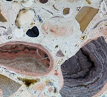 Miocene by Zosimus