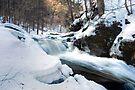 Rushing Winter Runoff At Conestoga Falls by Gene Walls