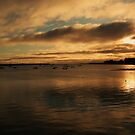 Malahide Harbour by Martina Fagan