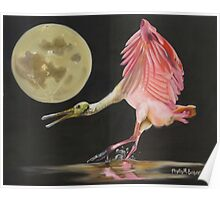 Moon Over Mississippi A Roseate Spoonbills Perspective Poster