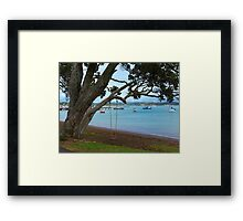 Peaceful Russell.........! Framed Print