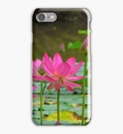 On Lotus Pond iPhone Case/Skin