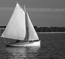 Evening Sail in a Cat Boat by Mary-Anne Ganley