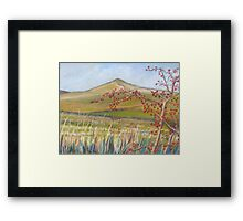 Sharphaw Framed Print