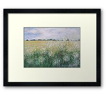 Cow Parsley Framed Print