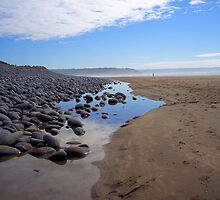 Devon: Northam Burrows by Rob Parsons