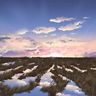 Dusky Marsh by Lee Anne Kortus