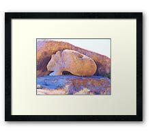 Guinea Pig Rock Framed Print