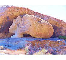 Guinea Pig Rock Photographic Print