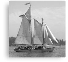 Windjammer Sailing in Booth Bay  Canvas Print