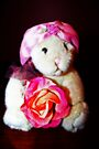 Little Miss Rose by Evita