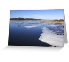 Thaw on the Marsh Greeting Card