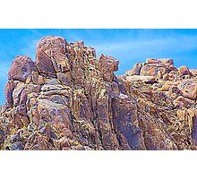 Puma Rock Photographic Print