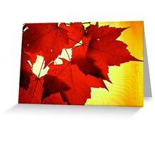 RED NOVEMBER Greeting Card