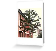 Monkey Puzzle Tree 20foot plus Greeting Card