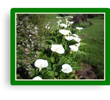 Host of Lilies Canvas Print