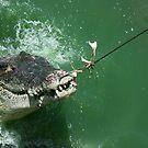 Crocodile caught by Dmitry Rostovtsev