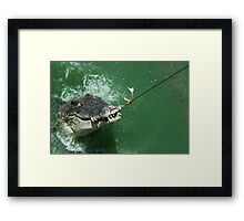 Crocodile caught Framed Print