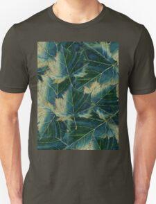Leaves drawing  T-Shirt