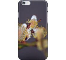 Purrhaps Spring is the cat's meow iPhone Case/Skin