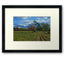 Finger Lakes National Forest Framed Print