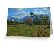 Finger Lakes National Forest Greeting Card