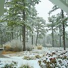 Snow Scene  from The Gazebo  by Rick  Todaro