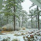 Snow Scene  from The Gazebo  by fiat777