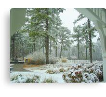 Snow Scene  from The Gazebo  Canvas Print