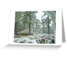 Snow Scene  from The Gazebo  Greeting Card