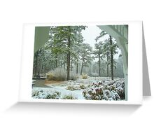 Snow Scene  from The Gazebo  Greeting Card